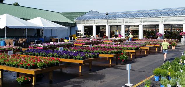 Garden Center Image