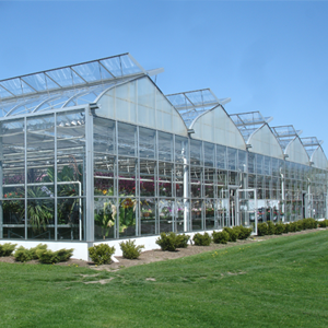 10 Greenhouse Design Mistakes That Can Kill Your Garden Center ... on greenhouse conservatory designs, garage plans designs, shed plans designs, gardening plans designs, greenhouse structures and designs, eco house plans designs, hoop house greenhouse designs, home plans designs, quonset greenhouse structure designs, best greenhouse designs, unique greenhouse designs,