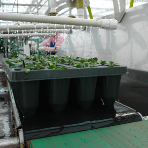 Greenhouse equipment