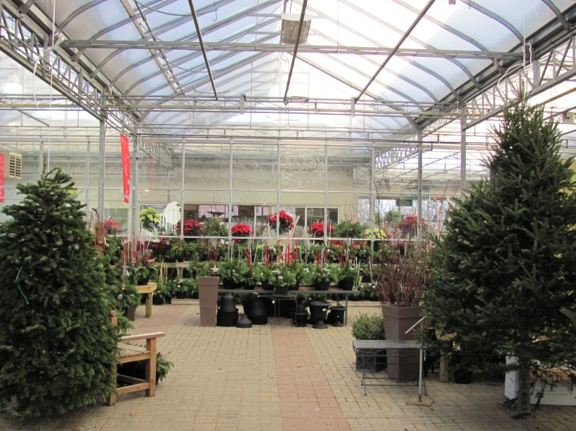 Garden Center Nursery Ideas For The Holiday Season Commercial Greenhouse Structures Systems Design Ggs