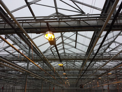 Supplemental lighting considerations for a commercial greenhouse you need to ensure that natural light is not being blocked in critical areas of your benches an issue which your lighting designer should consider when mozeypictures Gallery