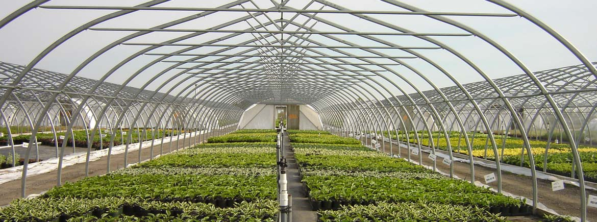 Coldframes Commercial Greenhouse Structures Systems
