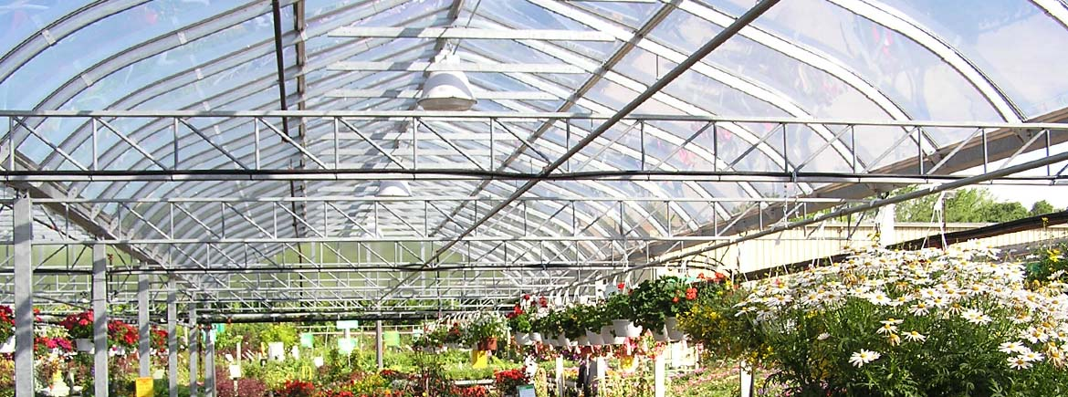 Curved Glass Greenhouses Commercial Greenhouse