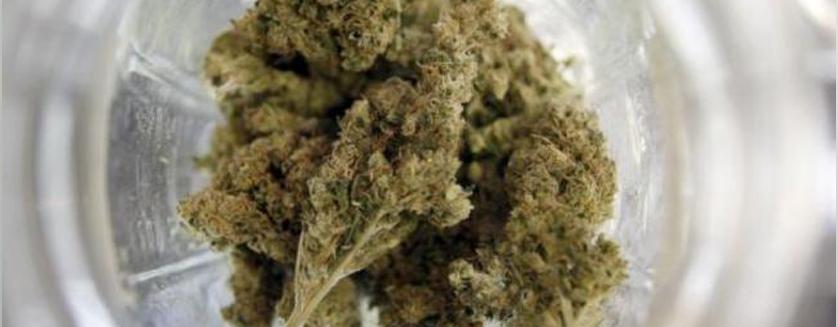 Florida Senate Passes Low Thc Medical Marijuana Bill