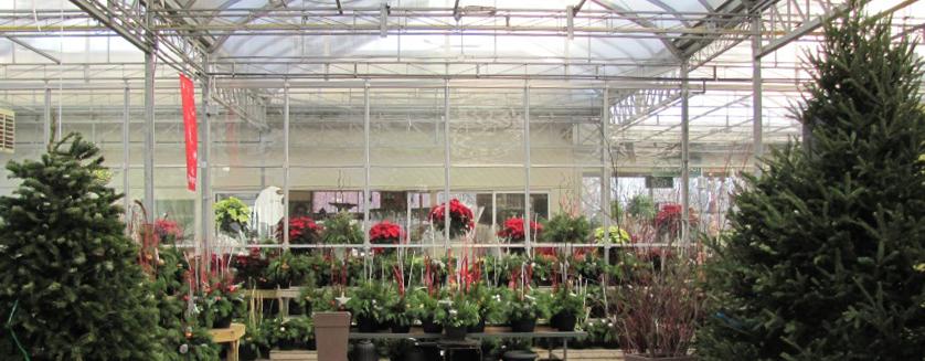 Garden Center Amp Nursery Ideas For The Holiday Season