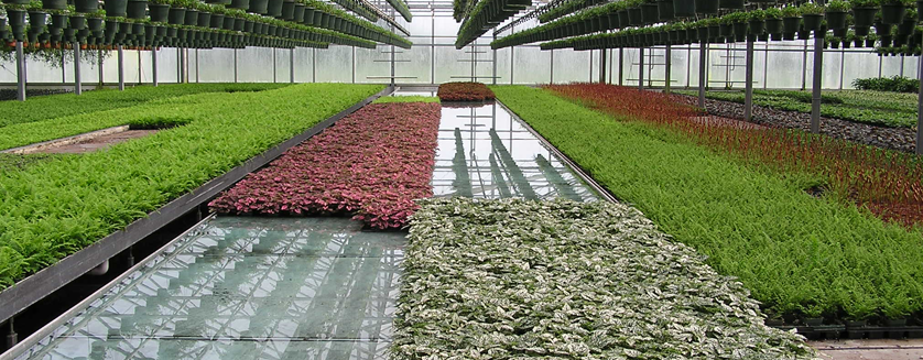 How Selecting The Right Bench For Your Crop Can Make All
