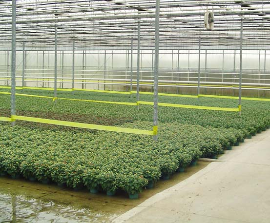 In-Floor Heating | Commercial Greenhouse Structures ...