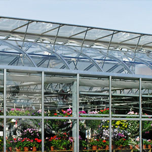 Top 10 Causes of Injuries in the Greenhouse | Commercial