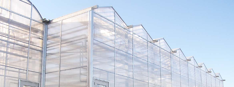 marijuana-greenhouse-slide3.jpg