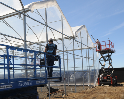 Best Practices for Commercial Greenhouse Construction Projects ...