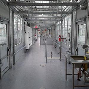 Marijuana Greenhouse & Indoor Cannabis Grow Facility