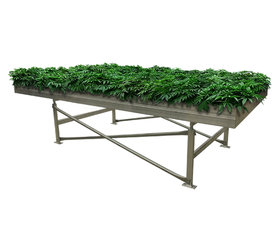 Marijuana Benches Growing Tables For Commercial Cannabis
