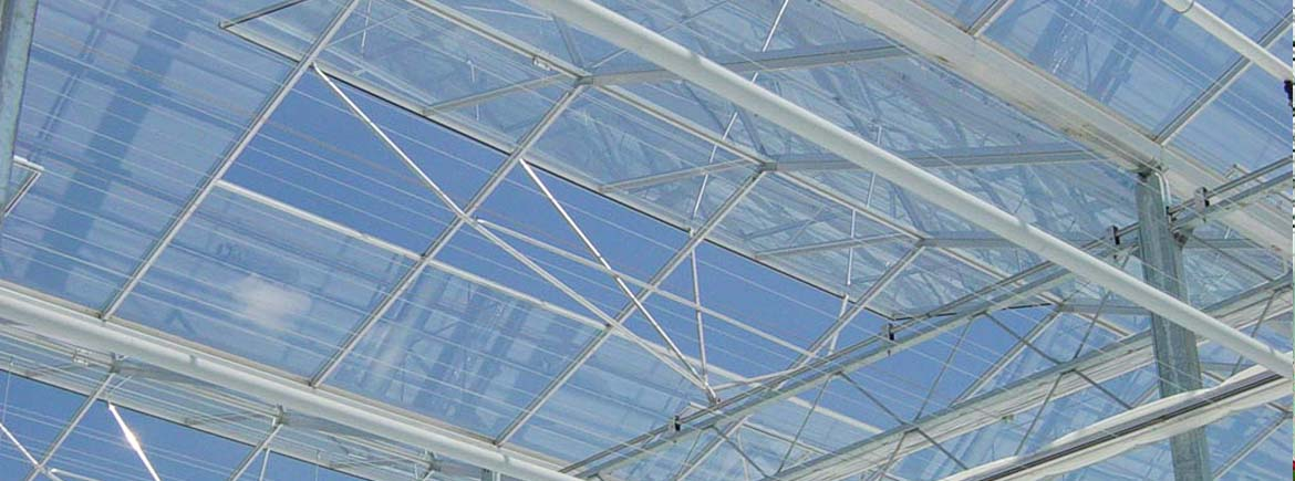 Low Profile Venlo Greenhouses Commercial Greenhouse