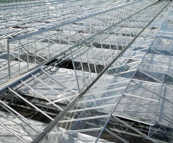 Marijuana Facility Commercial Greenhouse Structures